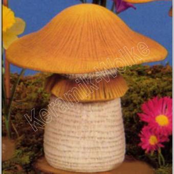Großer Pilz  ohne Frosch