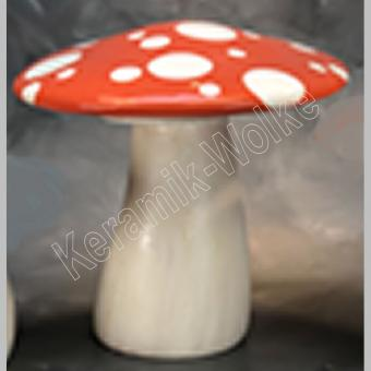 Großer Pilz mit flacher Kappe