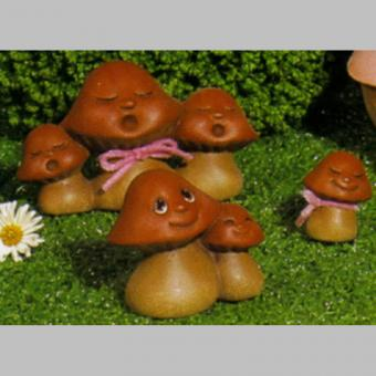 6 kleine Pilze