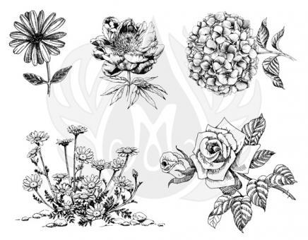 Flowers 3 XL