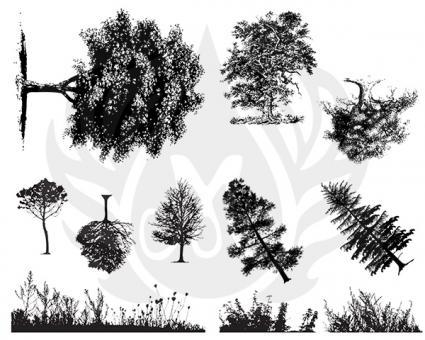 Botanical-Trees
