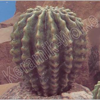 gr. Kaktus (ausgeschn. wählbar)