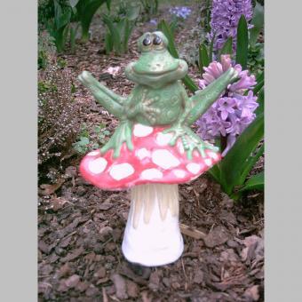 witziger Frosch auf Pilz
